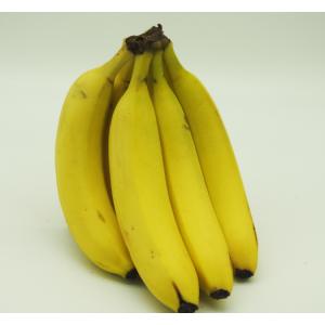 Bananas - Cavendish -Each