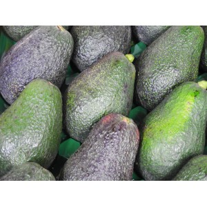 Special avocados 2 for $3.99
