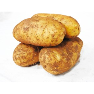 Potatoes - Dutch Cream (1kg)