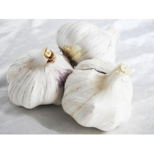 Garlic - imported Mexican
