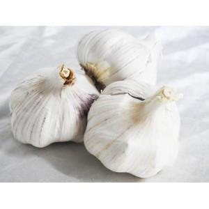 Garlic -AUSTRALIAN