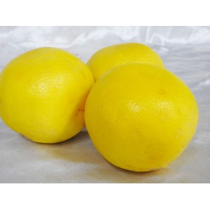 Grapefruit (Yellow)