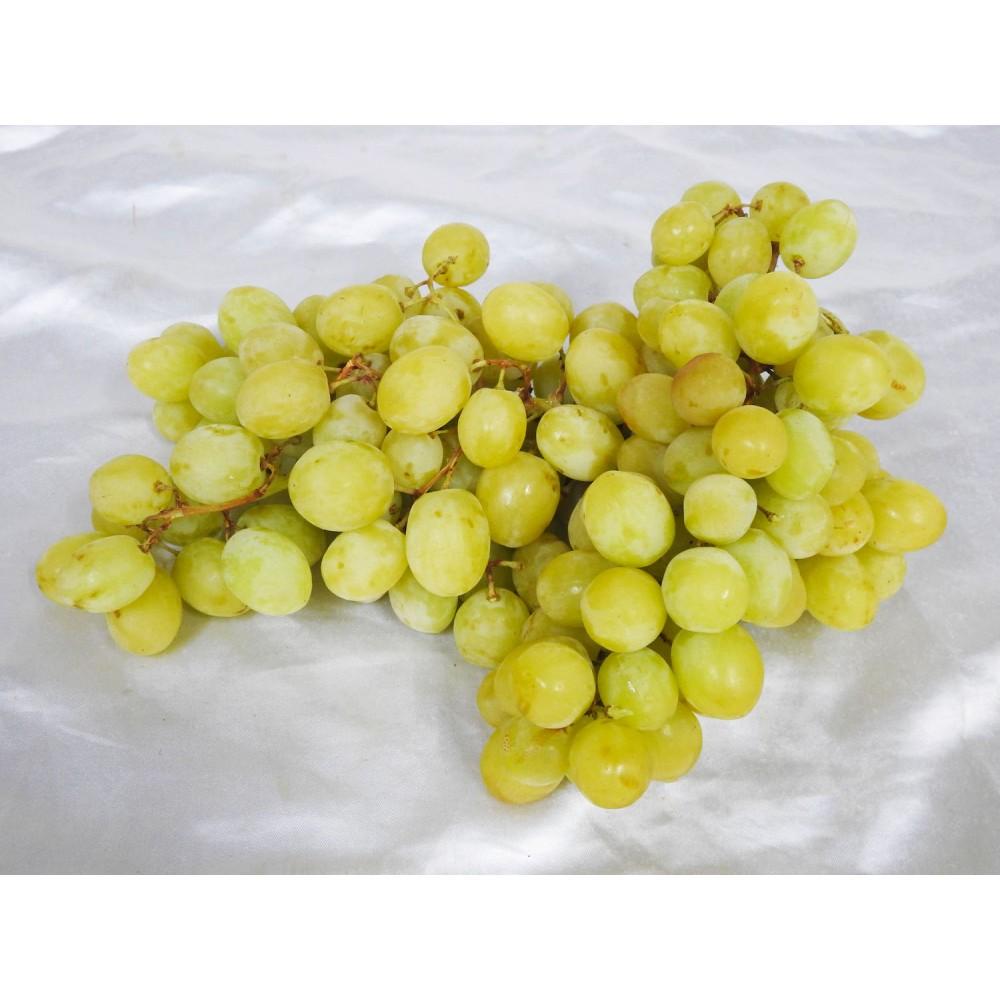 Grapes White Seedless AUSTRALIAN (500g)
