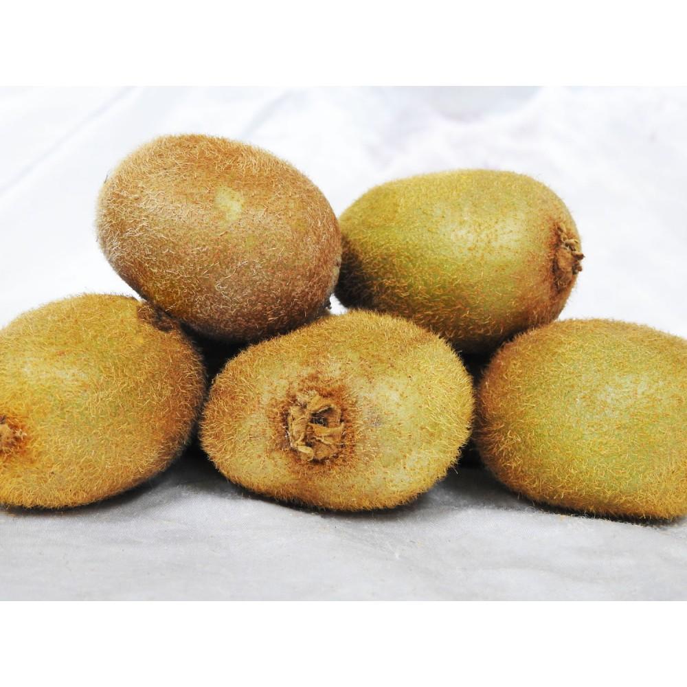 Kiwi Fruit (Green)