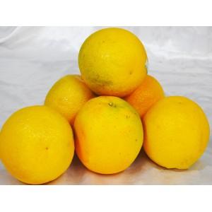 Oranges  (2KG)