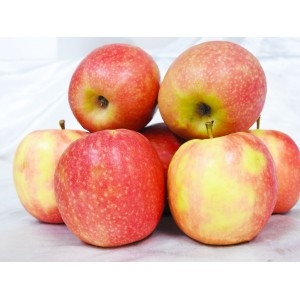 Apples - Pink Lady (1kg)