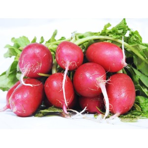 Radishes (Per Bunch)
