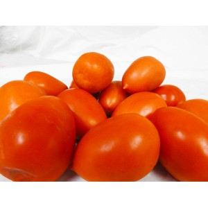 Tomatoes - Roma