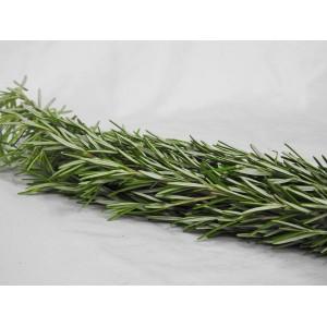 Rosemary (Per Bunch)
