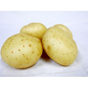 Potatoes - Washed (1kg)