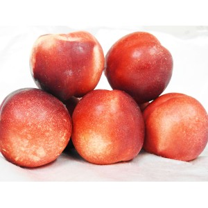 Nectarines (White)