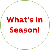 What's In Season!